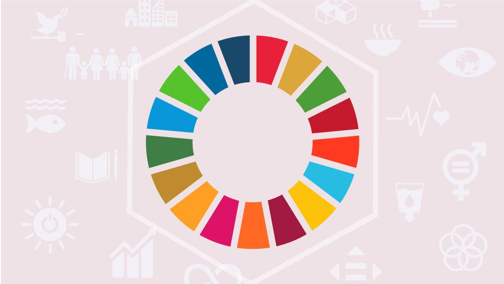 L Obiettivo 4 Dell Agenda 2030 Le Mille Facce Del Diritto All Istruzione