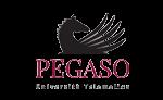 logo_unipegaso